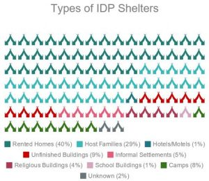 IDP Overview - Type of Shelter